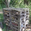 Build a Bug Barn -