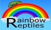 Rainbow Reptiles